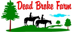 Dead Broke Farm Raleigh summer camps