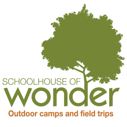 Raleigh summer camps Schoolhouse of Wonder